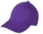purple cap ipl 2017